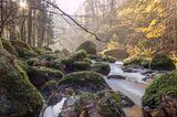 Fluss im Triebtal im Vogtland