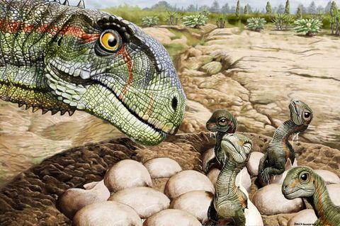 So könnte eine Familie von Mussaurus patagonicus ausgesehen haben
