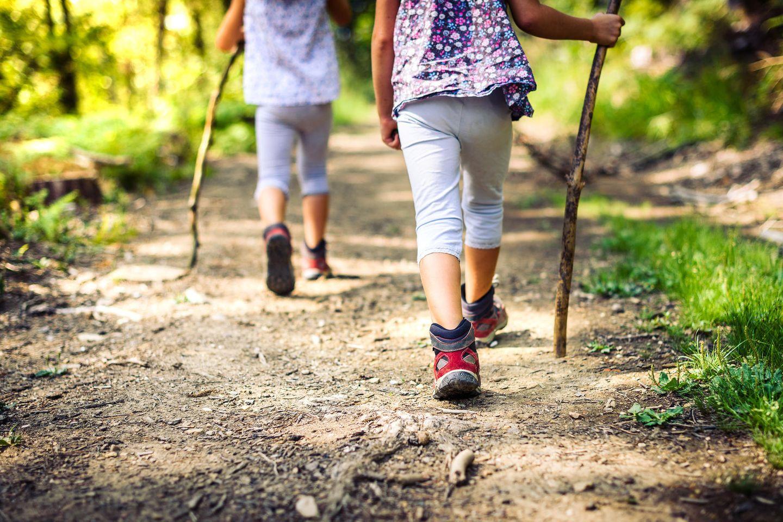 Zwillinge haben oft übereinstimmende Einstellungen zu Umwelt und Natur