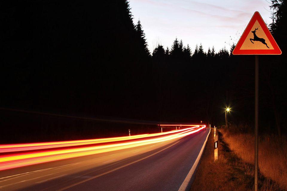 Dämmerige Straße mit einem Schild, das vor Wildwechsel warnt